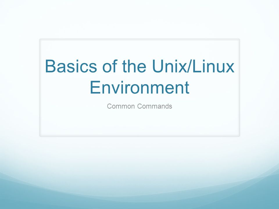 Basics of the Unix/Linux Environment Common Commands