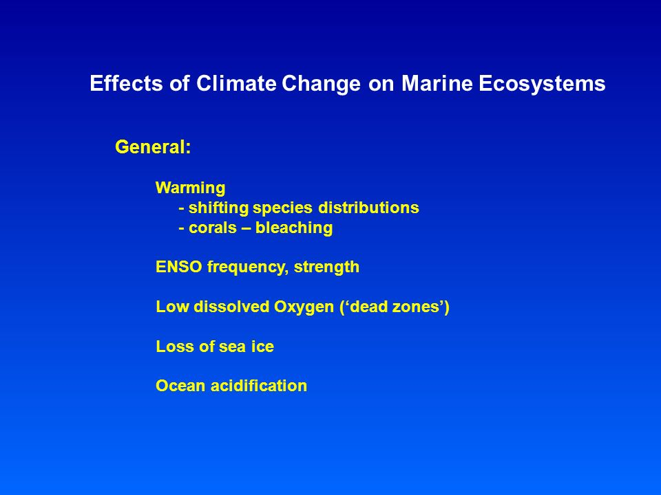 Effects of Climate Change on Marine Ecosystems General: Warming - shifting species distributions - corals – bleaching ENSO frequency, strength Low dissolved Oxygen ('dead zones') Loss of sea ice Ocean acidification