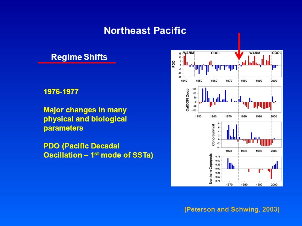 Northeast Pacific Regime Shifts Major changes in many physical and biological parameters PDO (Pacific Decadal Oscillation – 1 st mode of SSTa) (Peterson and Schwing, 2003)