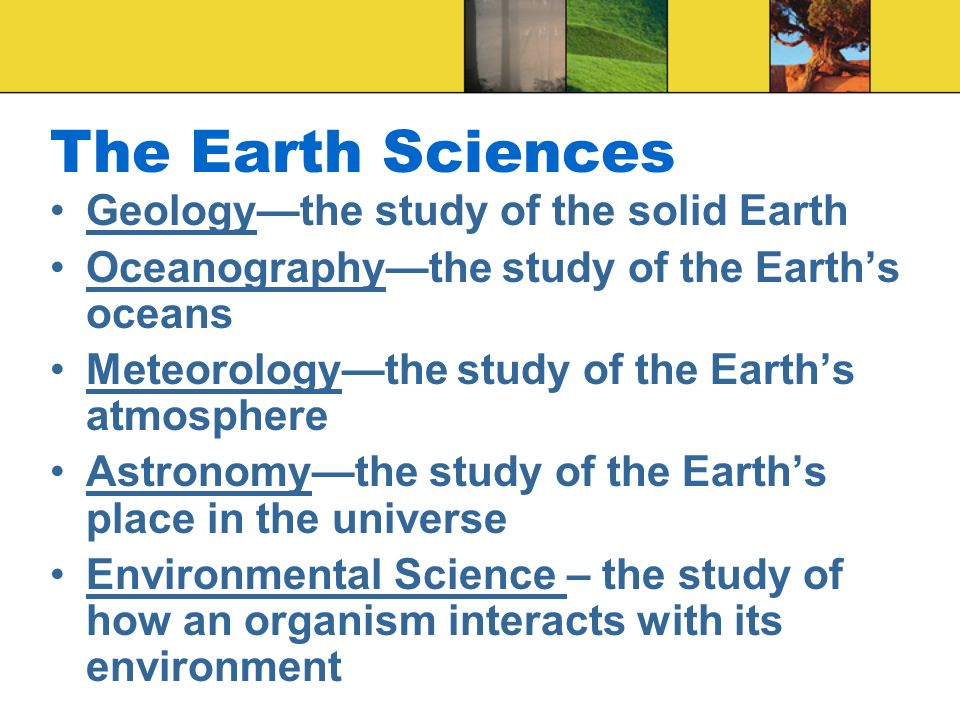 The Earth Sciences Geology—the study of the solid Earth Oceanography—the study of the Earth's oceans Meteorology—the study of the Earth's atmosphere Astronomy—the study of the Earth's place in the universe Environmental Science – the study of how an organism interacts with its environment