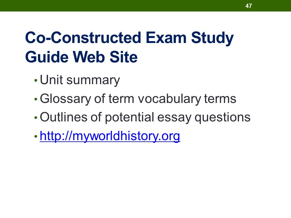 Co-Constructed Exam Study Guide Web Site Unit summary Glossary of term vocabulary terms Outlines of potential essay questions http://myworldhistory.org 47