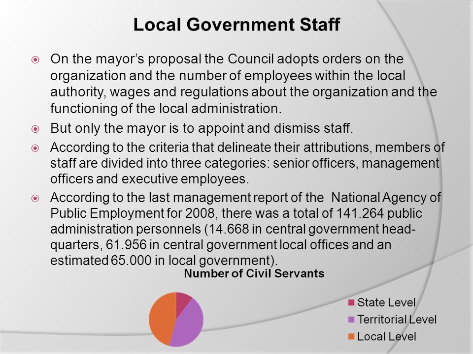Local Government Staff  On the mayor's proposal the Council adopts orders on the organization and the number of employees within the local authority, wages and regulations about the organization and the functioning of the local administration.