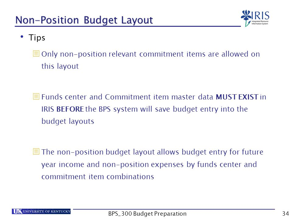 bps 300 budget preparation1 bps 300 business planning simulation