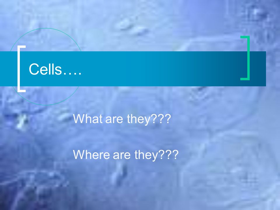 Cells…. What are they??? Where are they???. Cell Drawings Blue book ...