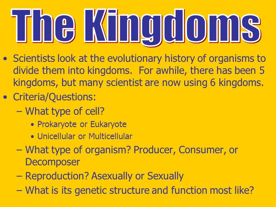 Printable Worksheets five kingdoms of living things worksheets : The Six Kingdoms of Life - ppt video online download