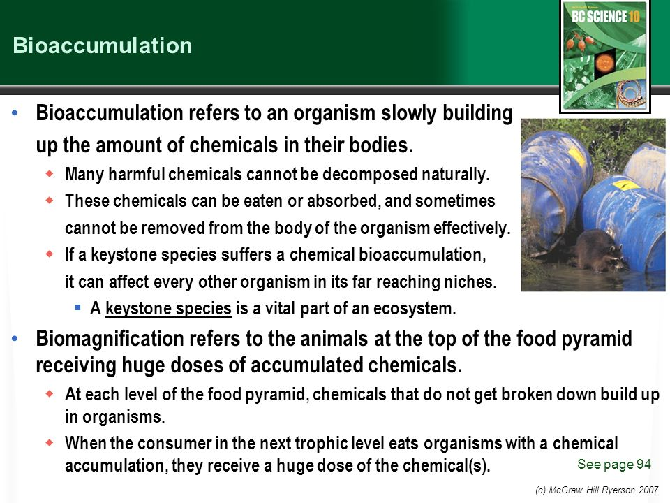 (c) McGraw Hill Ryerson 2007 Bioaccumulation Bioaccumulation refers to an organism slowly building up the amount of chemicals in their bodies.