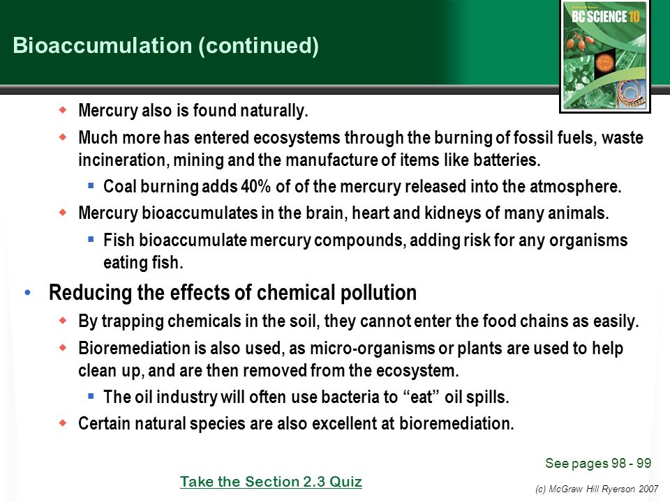 (c) McGraw Hill Ryerson 2007 Bioaccumulation (continued)  Mercury also is found naturally.