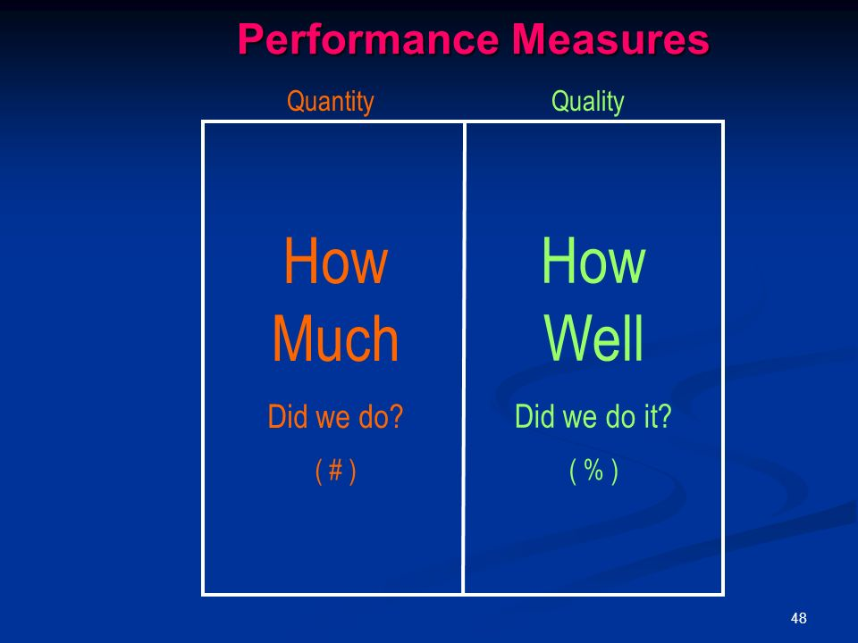 48 How Much Did we do ( # ) How Well Did we do it ( % ) QuantityQuality Performance Measures