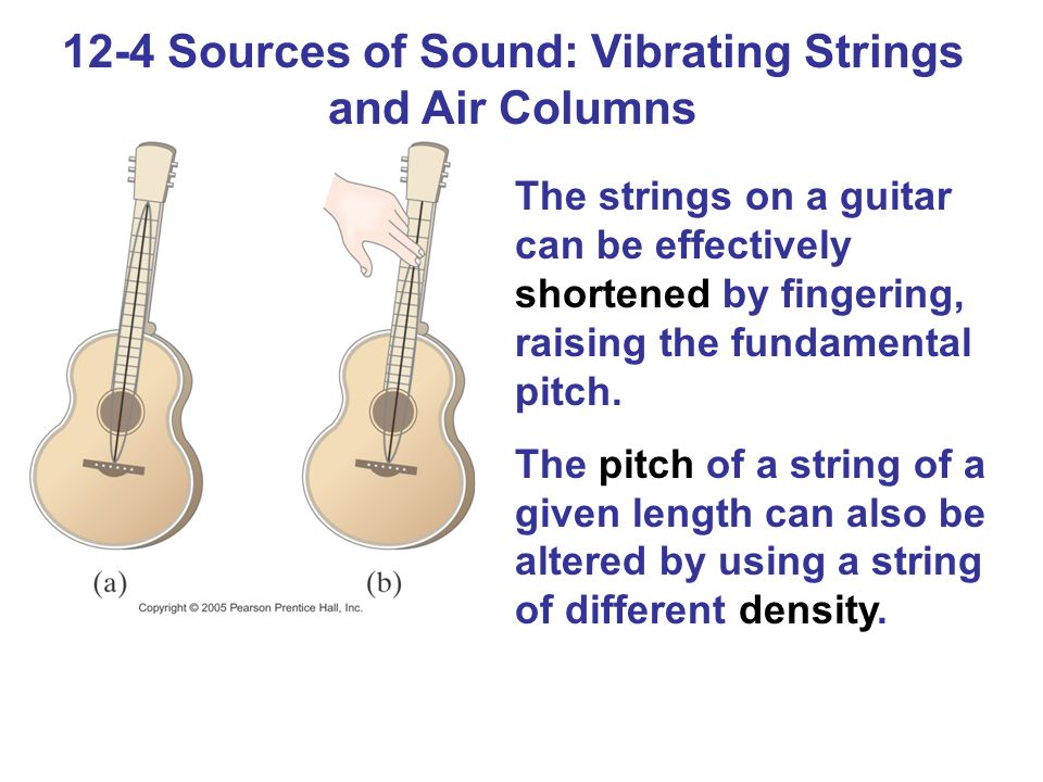 12-4 Sources of Sound: Vibrating Strings and Air Columns The strings on a guitar can be effectively shortened by fingering, raising the fundamental pitch.