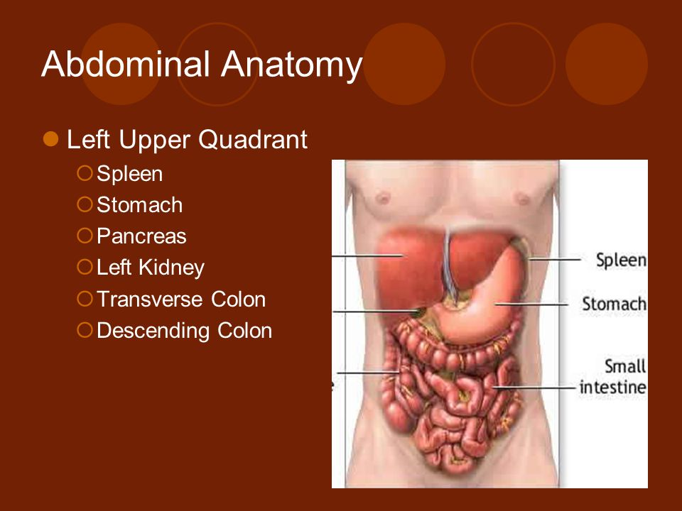1 Abdominal Pain AMY LITTLE, MD ALBANY MEDICAL CENTER  - ppt
