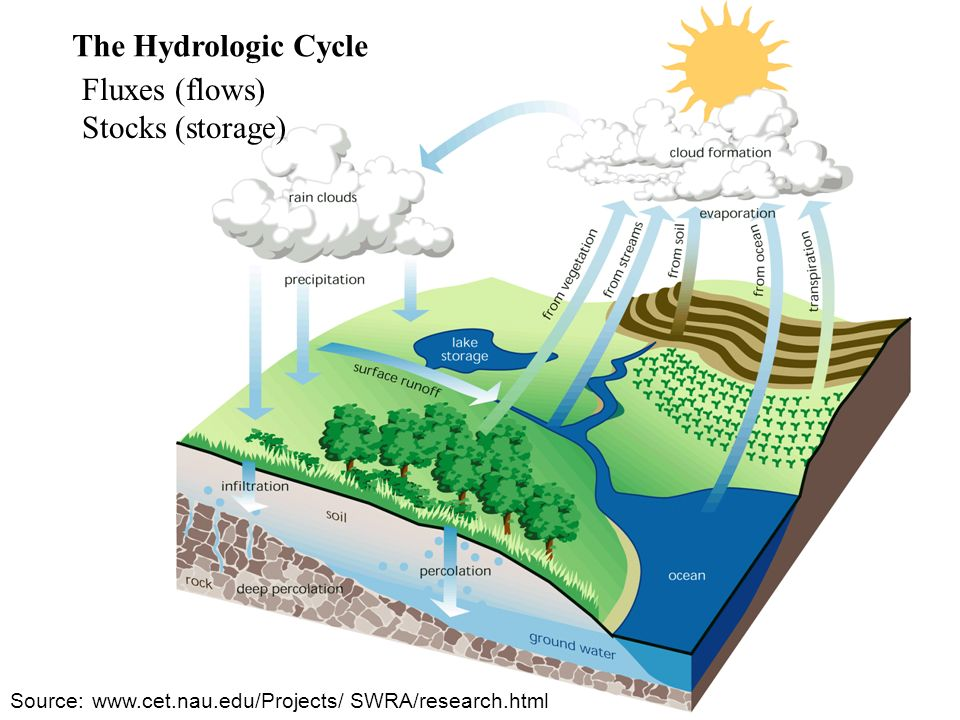 The Hydrologic Cycle Source:   SWRA/research.html Fluxes (flows) Stocks (storage)