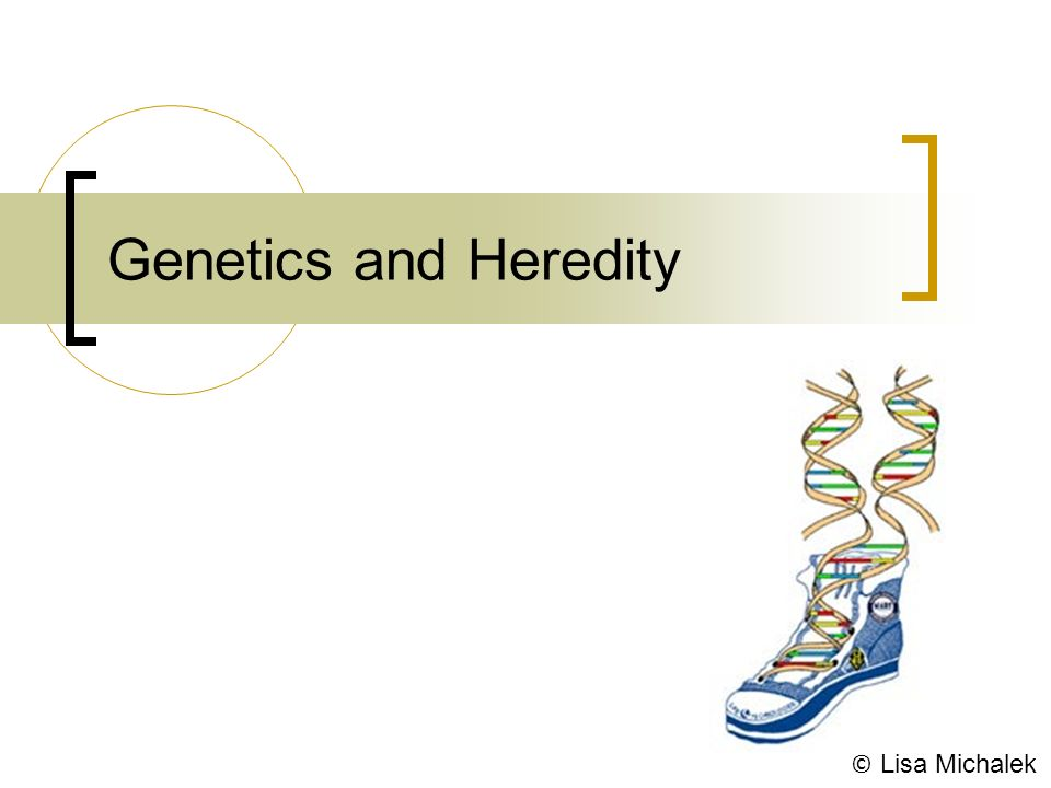 chapter 7 extending mendelian genetics Chapter 7: extending mendelian genetics more than genes phenotype = genotype + environment genetic disorders sex-linked traits what are the chromosomes that determine sex in humans.