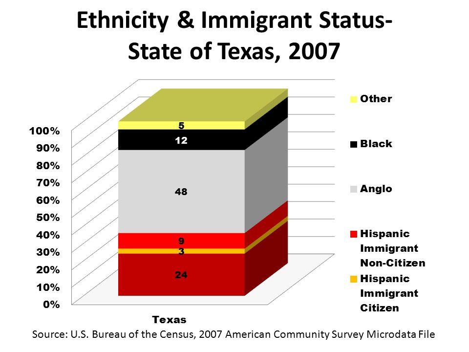 Ethnicity & Immigrant Status- State of Texas, 2007 Source: U.S.