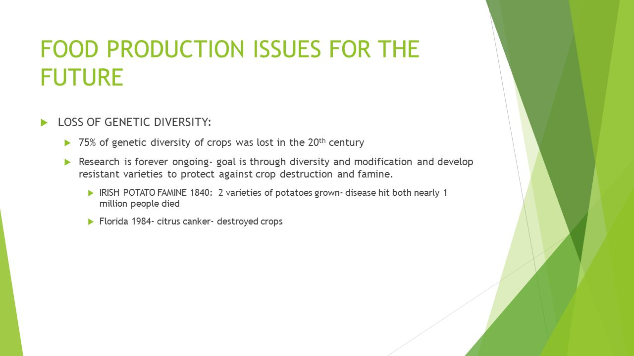 FOOD PRODUCTION ISSUES FOR THE FUTURE  LOSS OF GENETIC DIVERSITY:  75% of genetic diversity of crops was lost in the 20 th century  Research is forever ongoing- goal is through diversity and modification and develop resistant varieties to protect against crop destruction and famine.
