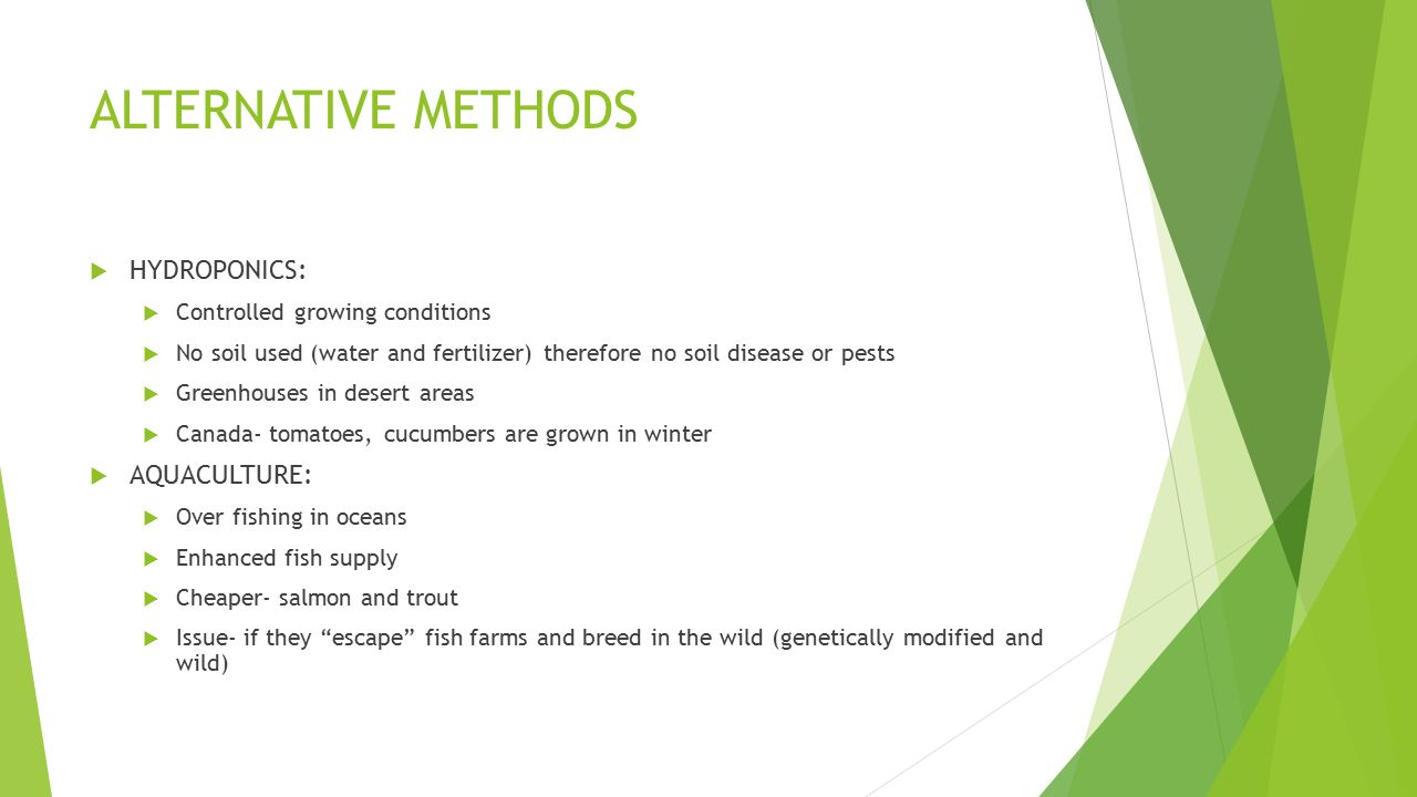 ALTERNATIVE METHODS  HYDROPONICS:  Controlled growing conditions  No soil used (water and fertilizer) therefore no soil disease or pests  Greenhouses in desert areas  Canada- tomatoes, cucumbers are grown in winter  AQUACULTURE:  Over fishing in oceans  Enhanced fish supply  Cheaper- salmon and trout  Issue- if they escape fish farms and breed in the wild (genetically modified and wild)