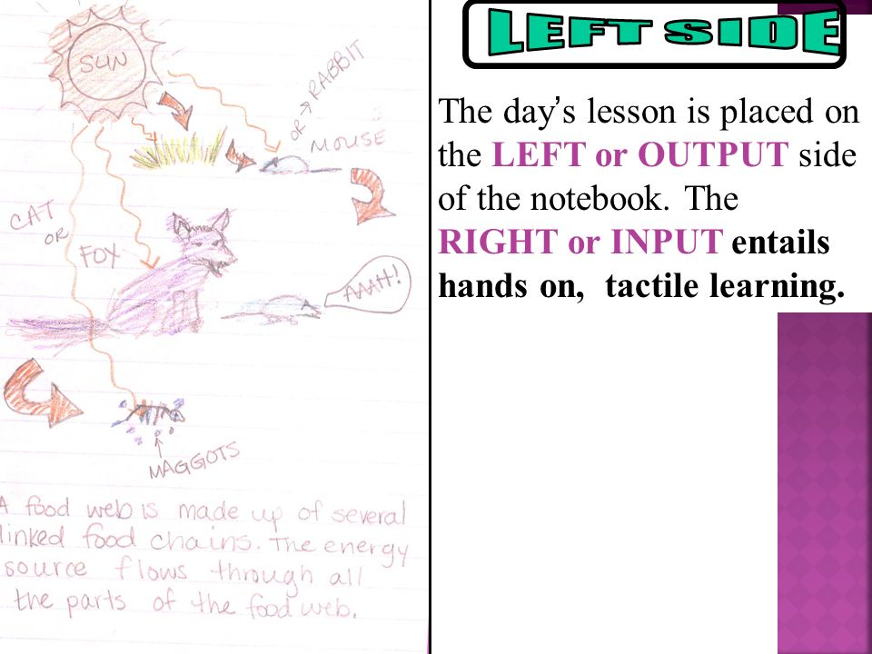 The day's lesson is placed on the LEFT or OUTPUT side of the notebook.