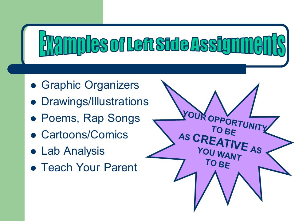 Graphic Organizers Drawings/Illustrations Poems, Rap Songs Cartoons/Comics Lab Analysis Teach Your Parent YOUR OPPORTUNITY TO BE AS CREATIVE AS YOU WANT TO BE