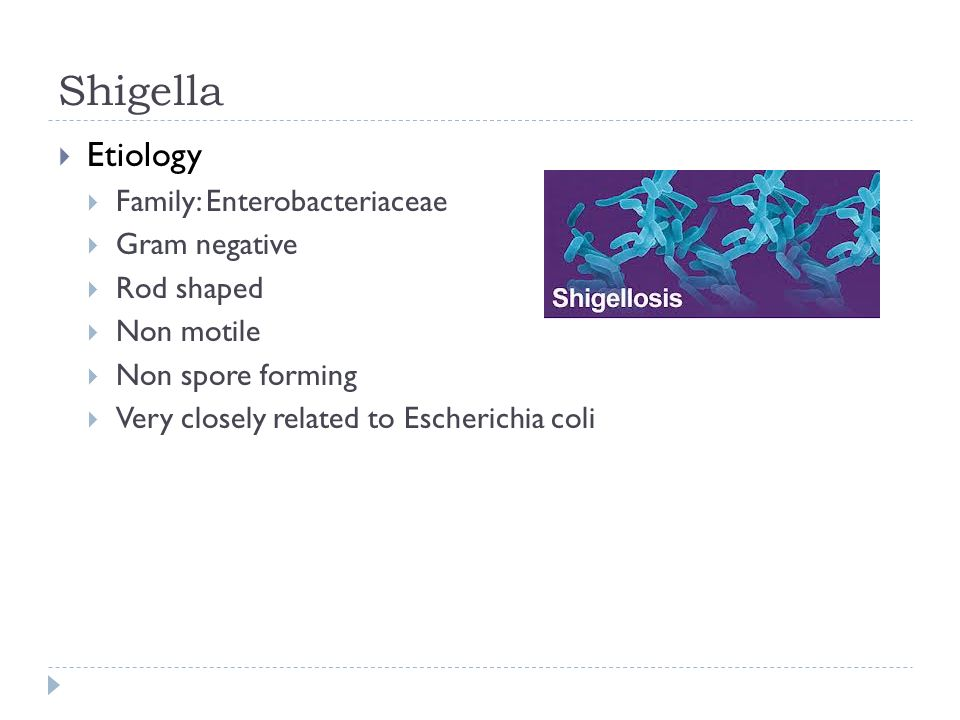 Shigella  Etiology  Family: Enterobacteriaceae  Gram negative  Rod shaped  Non motile  Non spore forming  Very closely related to Escherichia coli