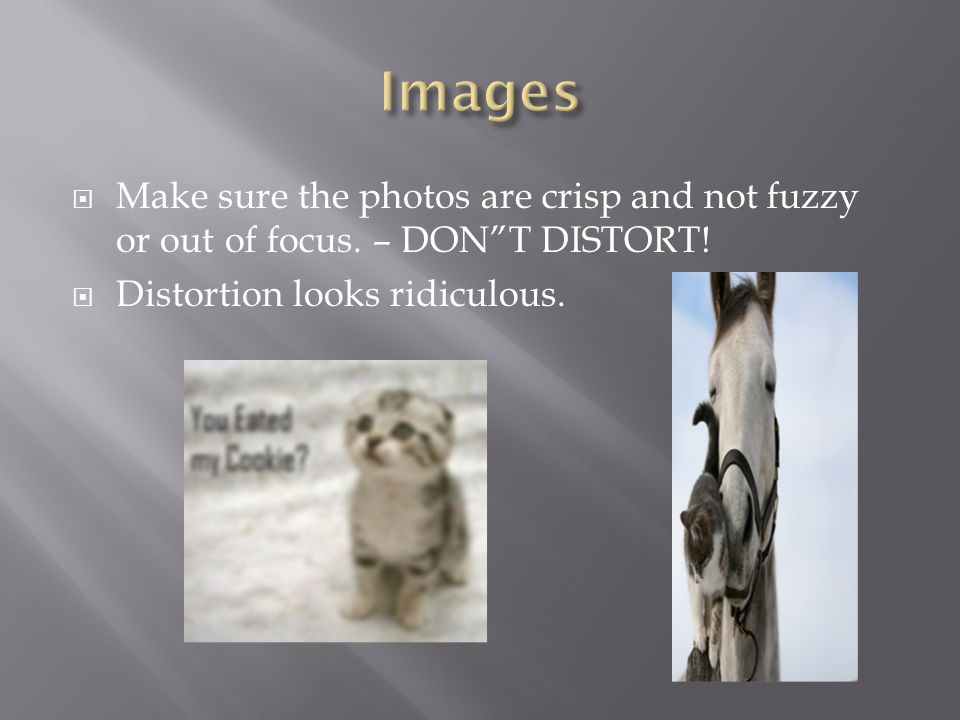  Make sure the photos are crisp and not fuzzy or out of focus.