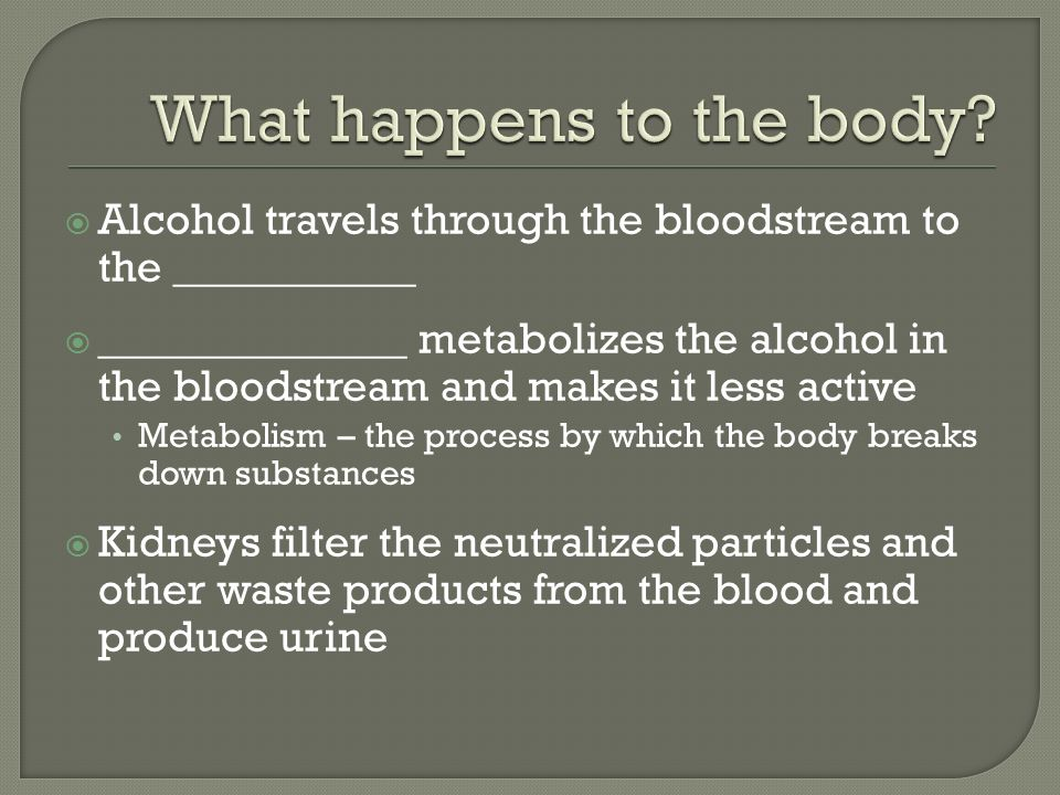  Alcohol travels through the bloodstream to the ___________  ______________ metabolizes the alcohol in the bloodstream and makes it less active Metabolism – the process by which the body breaks down substances  Kidneys filter the neutralized particles and other waste products from the blood and produce urine
