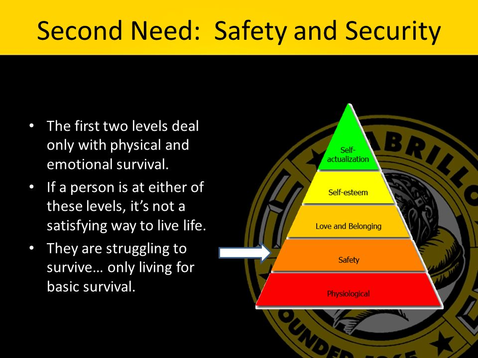 Second Need: Safety and Security The first two levels deal only with physical and emotional survival.