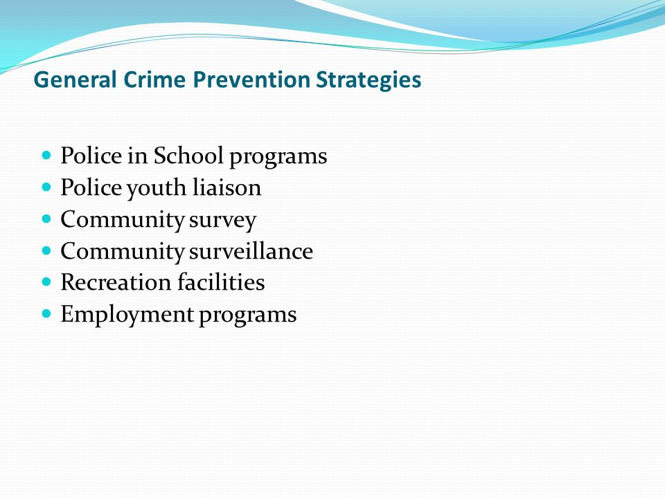 General Crime Prevention Strategies Police in School programs Police youth liaison Community survey Community surveillance Recreation facilities Employment programs
