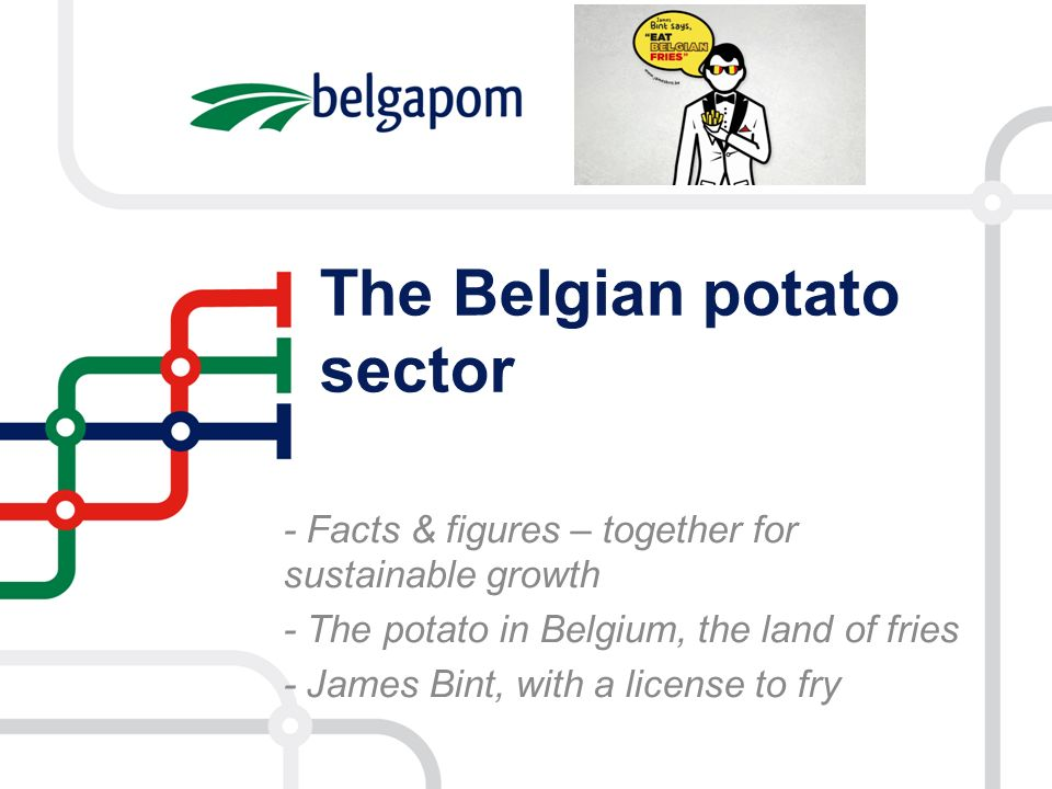 The Belgian potato sector - Facts & figures – together for