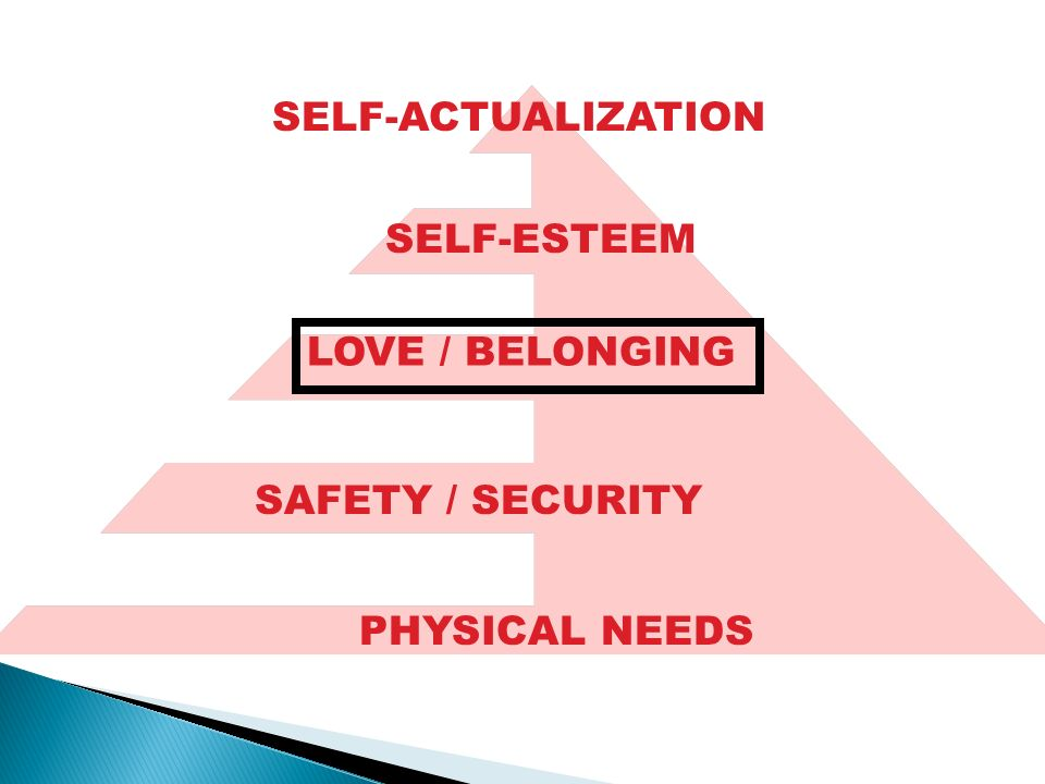 SELF-ACTUALIZATION SELF-ESTEEM SAFETY / SECURITY PHYSICAL NEEDS LOVE / BELONGING