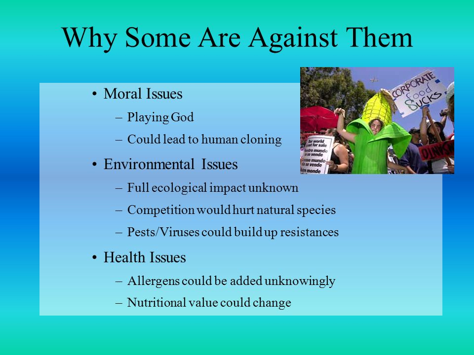 Why Some Are Against Them Moral Issues –Playing God –Could lead to human cloning Environmental Issues –Full ecological impact unknown –Competition would hurt natural species –Pests/Viruses could build up resistances Health Issues –Allergens could be added unknowingly –Nutritional value could change