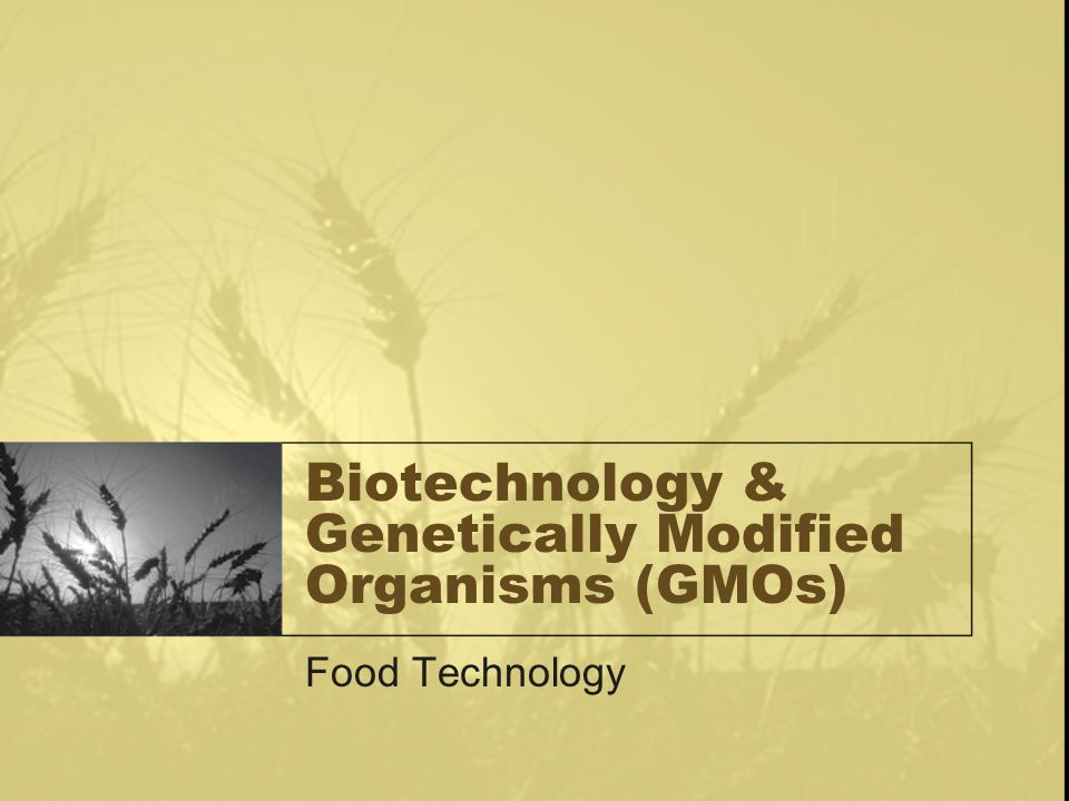 Biotechnology & Genetically Modified Organisms (GMOs) Food Technology