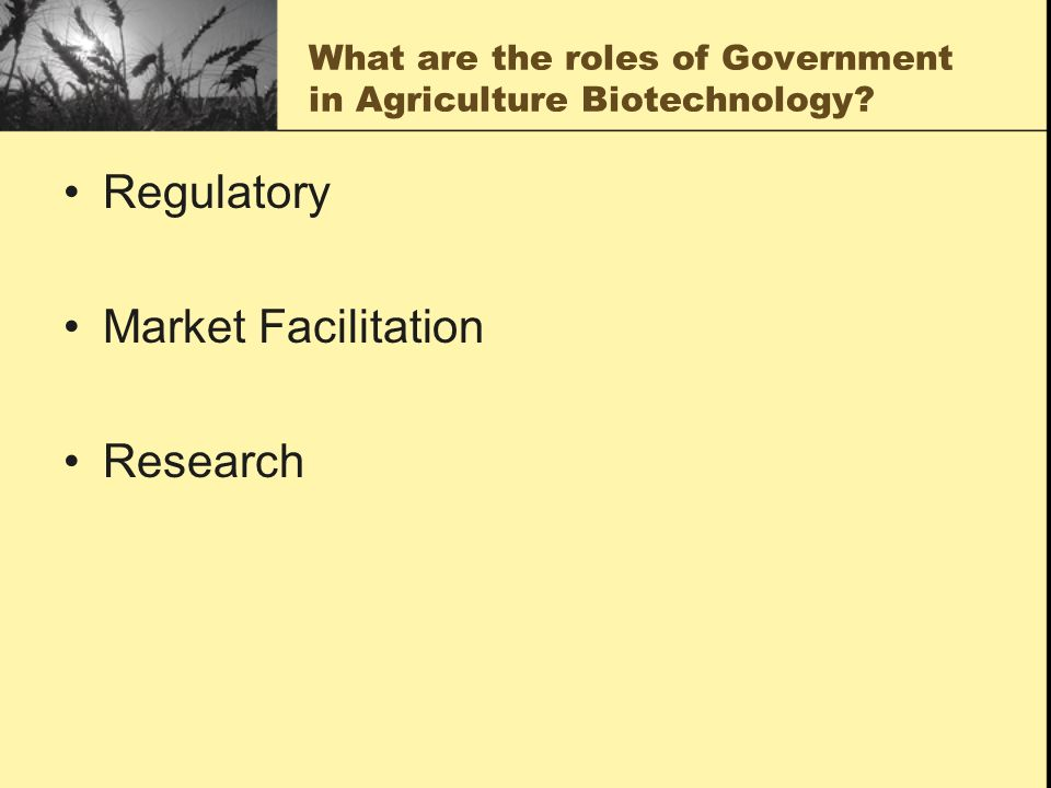 What are the roles of Government in Agriculture Biotechnology.