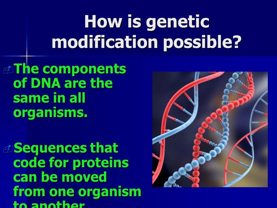 How is genetic modification possible.  The components of DNA are the same in all organisms.