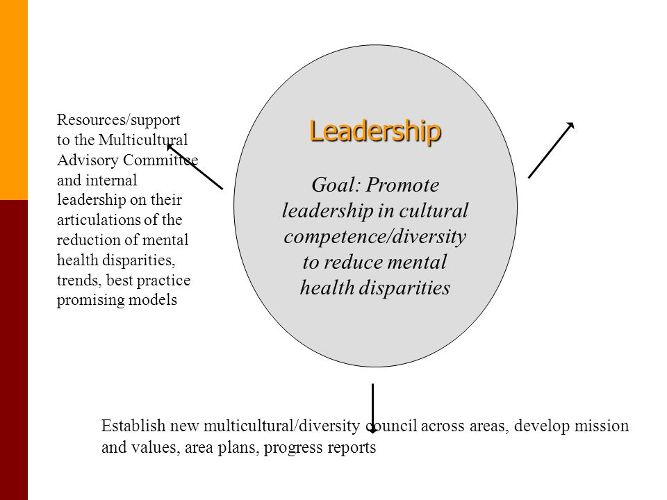Leadership Goal: Promote leadership in cultural competence/diversity to reduce mental health disparities Resources/support to the Multicultural Advisory Committee and internal leadership on their articulations of the reduction of mental health disparities, trends, best practice promising models Establish new multicultural/diversity council across areas, develop mission and values, area plans, progress reports