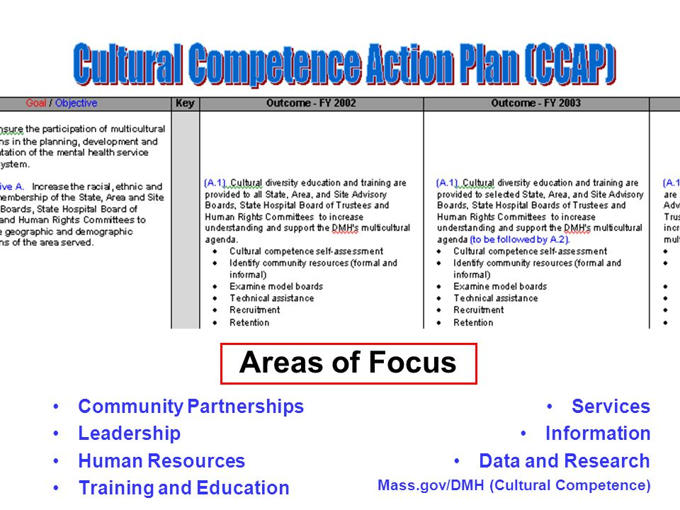Community Partnerships Leadership Human Resources Training and Education Services Information Data and Research Mass.gov/DMH (Cultural Competence) Areas of Focus