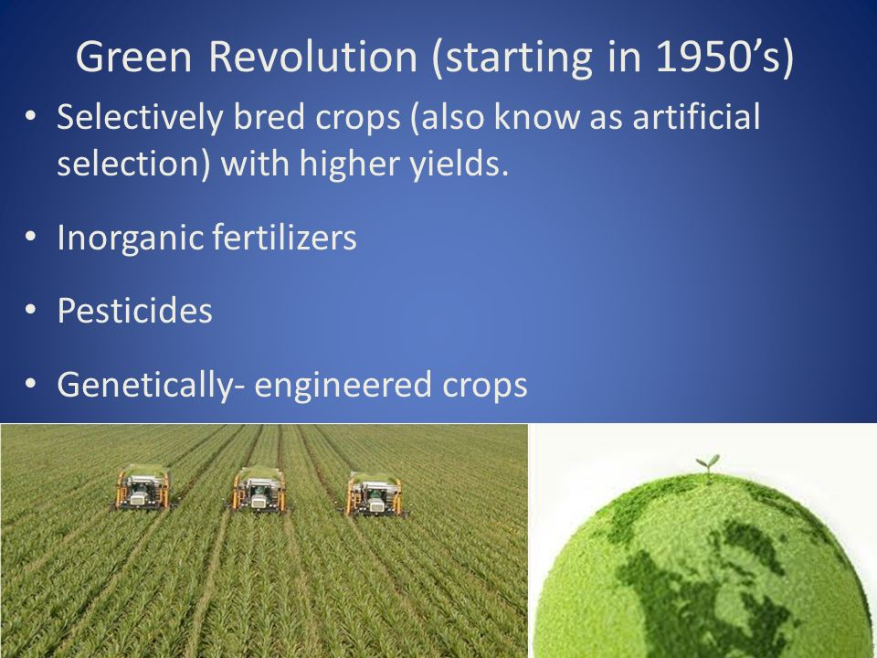 Green Revolution (starting in 1950's) Selectively bred crops (also know as artificial selection) with higher yields.