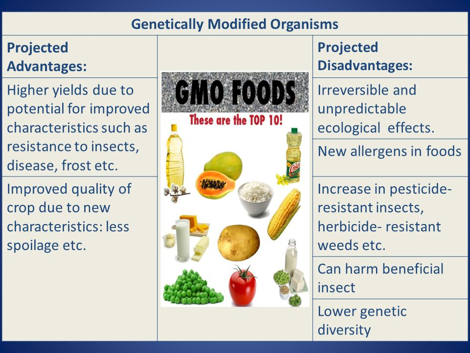 Genetically Modified Organisms Projected Advantages: Projected Disadvantages: Higher yields due to potential for improved characteristics such as resistance to insects, disease, frost etc.