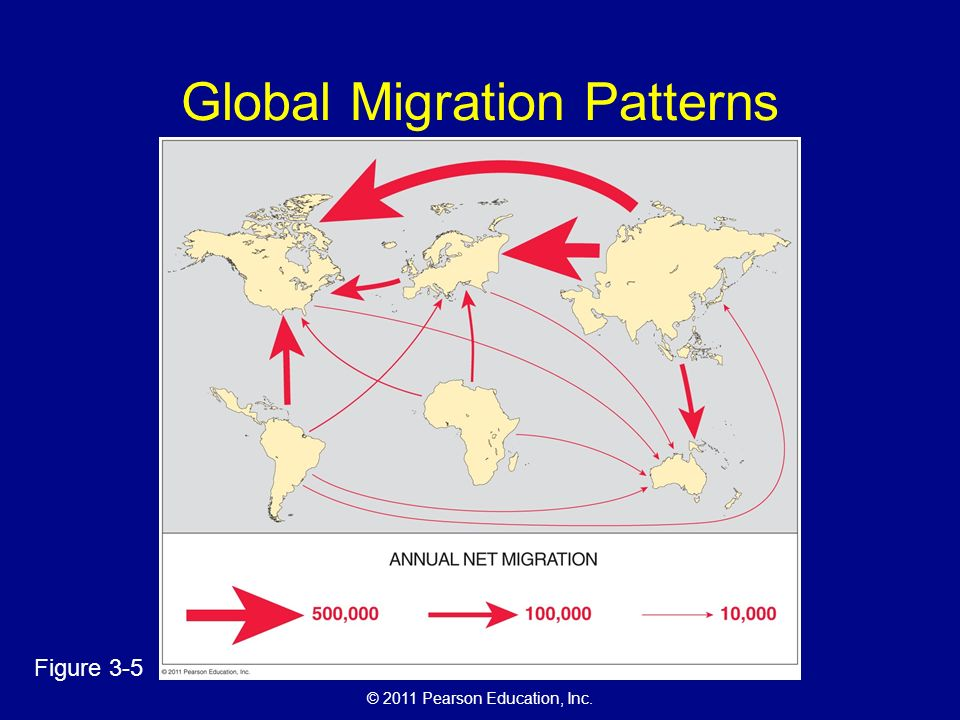 © 2011 Pearson Education, Inc. Global Migration Patterns Figure 3-5
