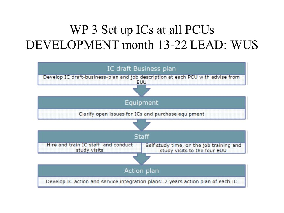 WP 3 Set up ICs at all PCUs DEVELOPMENT month LEAD: WUS