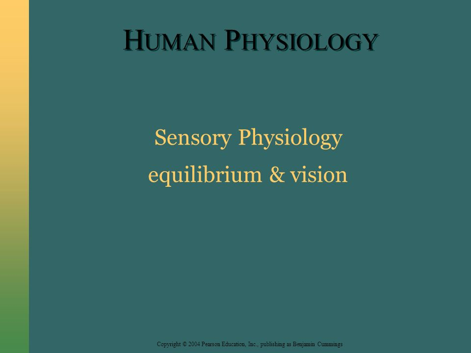 Copyright © 2004 Pearson Education, Inc., publishing as Benjamin Cummings H UMAN P HYSIOLOGY Sensory Physiology equilibrium & vision