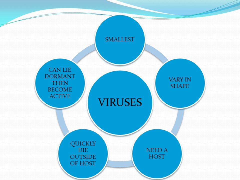 VIRUSES SMALLEST VARY IN SHAPE NEED A HOST QUICKLY DIE OUTSIDE OF HOST CAN LIE DORMANT THEN BECOME ACTIVE