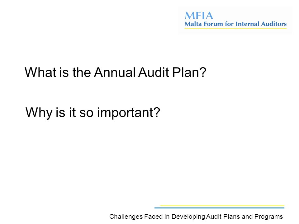 What is the Annual Audit Plan.