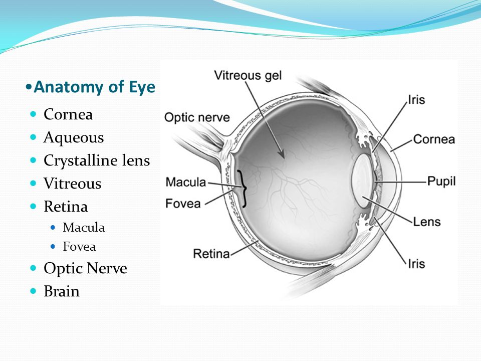 Cheryl J. Reed, O.D.. Snellen Visual Acuity A measure of smallest ...