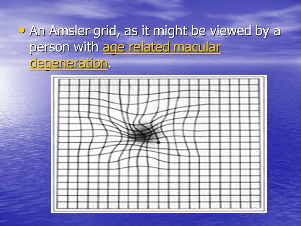 1 Testing Sensory Visual Function 2 Types 1 Psychophysical