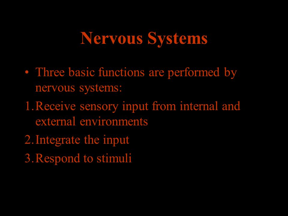 Nervous Systems Three basic functions are performed by nervous systems: 1.Receive sensory input from internal and external environments 2.Integrate the input 3.Respond to stimuli
