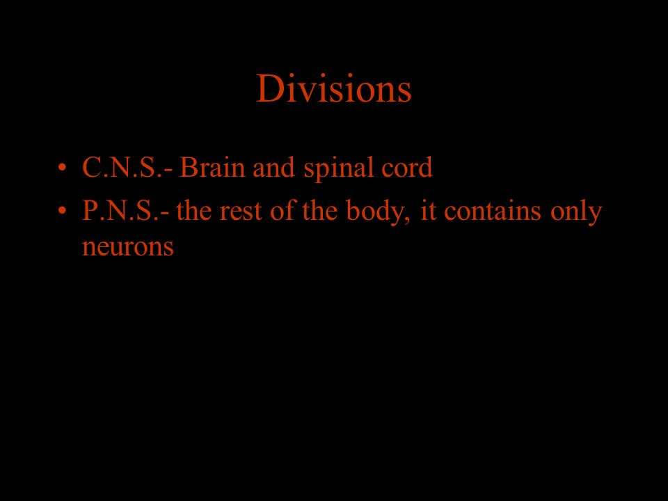 Divisions C.N.S.- Brain and spinal cord P.N.S.- the rest of the body, it contains only neurons
