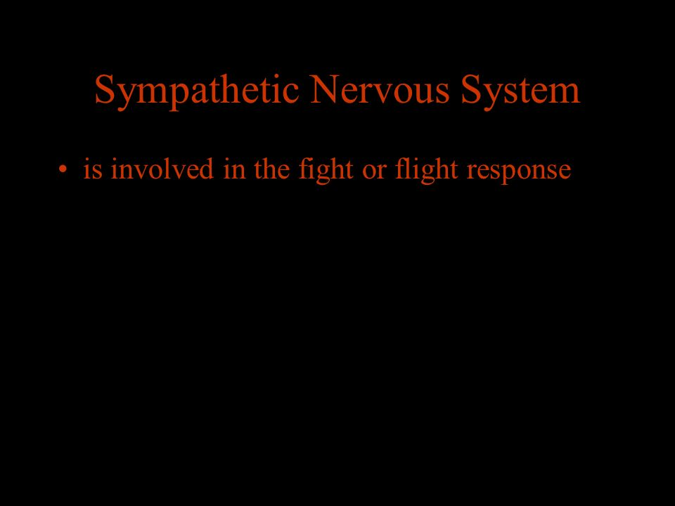 Sympathetic Nervous System is involved in the fight or flight response