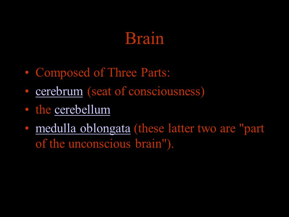 Brain Composed of Three Parts: cerebrum (seat of consciousness)cerebrum the cerebellumcerebellum medulla oblongata (these latter two are part of the unconscious brain ).medulla oblongata