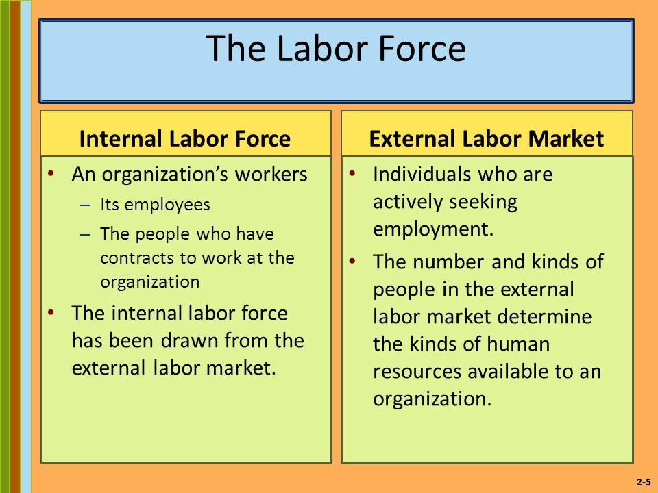 2-5 The Labor Force Internal Labor Force An organization's workers – Its employees – The people who have contracts to work at the organization The internal labor force has been drawn from the external labor market.
