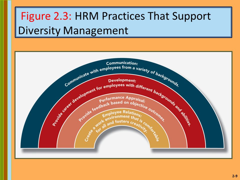 2-9 Figure 2.3: HRM Practices That Support Diversity Management