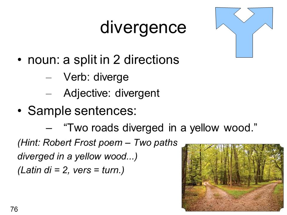 Divergence Noun A Split In 2 Directions Verb Diverge Adjective